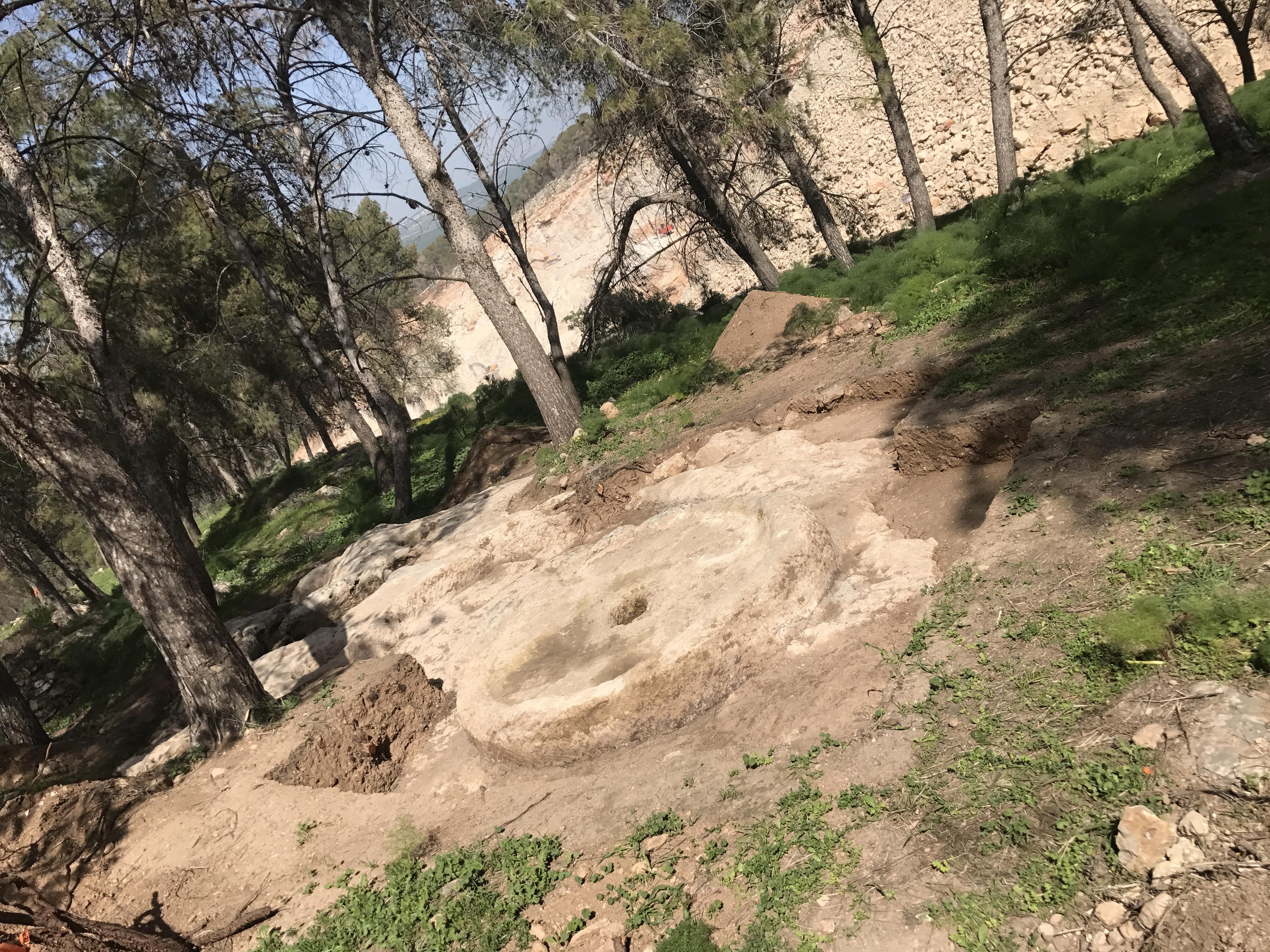 בית בד עתיק מהתקופה הביזאנטית