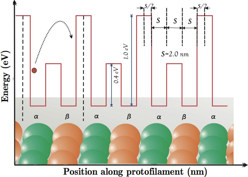 Quantum Microtubules (Published)