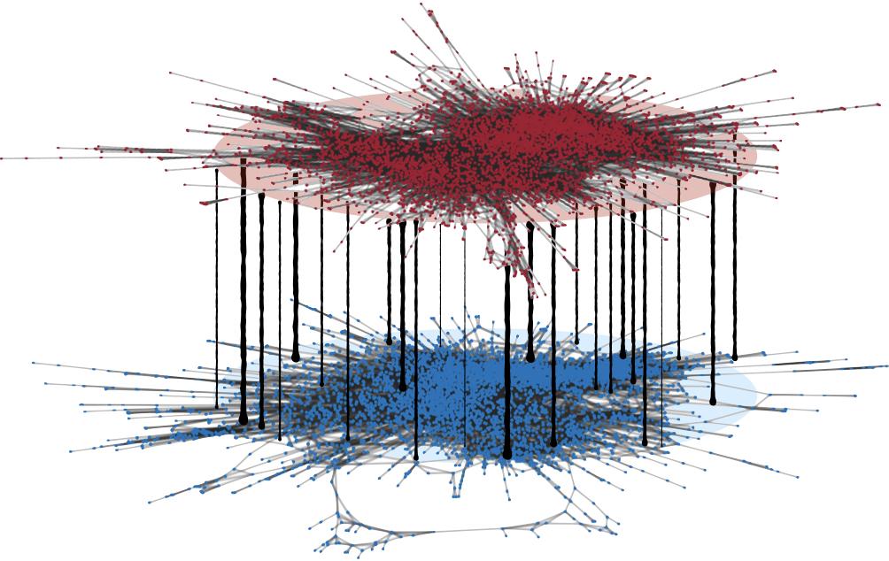 Multiplex Social Network (Published)
