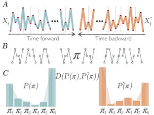 Code for Time Reversibility by Ordinal Patterns (TiROP). Published in Chaos