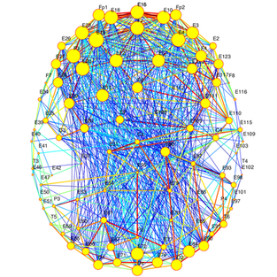 Tutorial for Complex Brain networks.