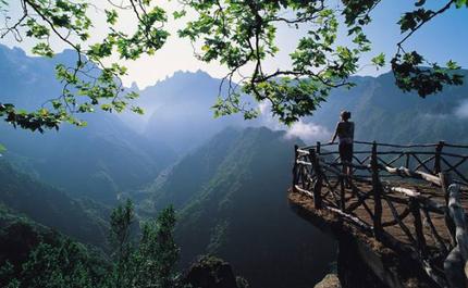 Madeira .png