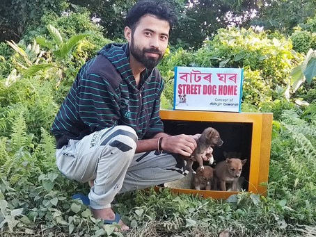 A man (32) from India is turning discarded television sets into homes for paw-dorable street dogs