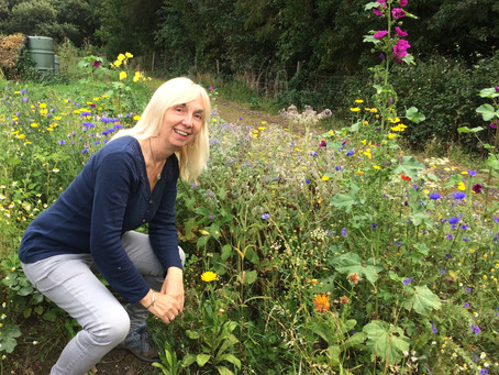 Alison is planting wild meadows in areas of wastelands to bring back the bees and the butterflies