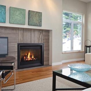 Regency Gas Fireplace p36-1-rgb.jpg