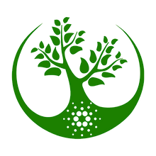 st4na logo.png