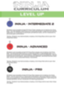 iNinja Level Up Progressions_Page_3.jpg