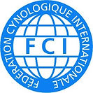 FCI-300x300.jpg