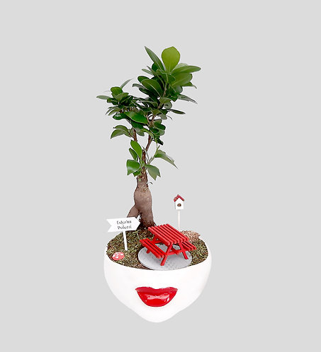 RED LIPS AND BONSAI