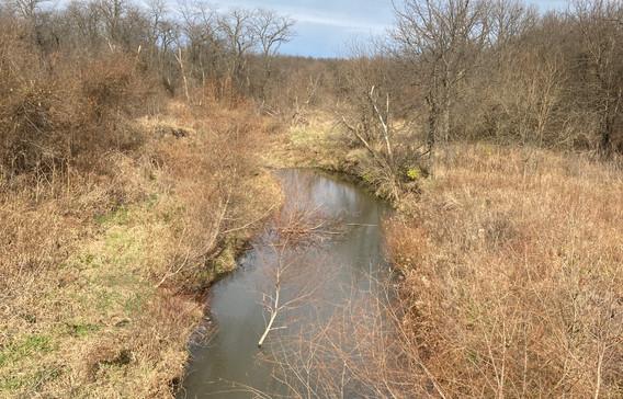 2-Creek.JPG