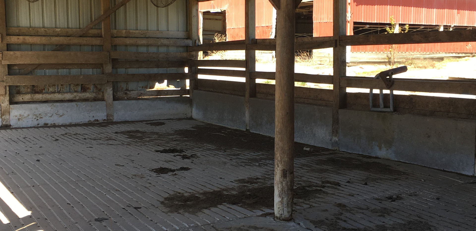w39-26114 Cattle Shed Inside 2.jpg