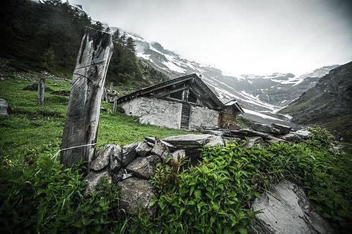 Alpenleben