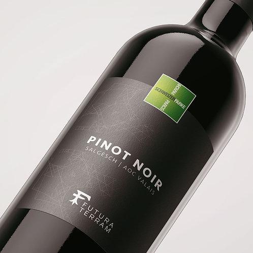 6er-Paket Pinot Noir Salgesch AOC Valais