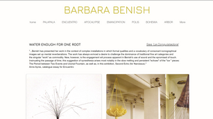 Barbara_Benish_Project.png