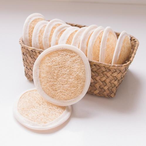 Disco de esponja vegetal