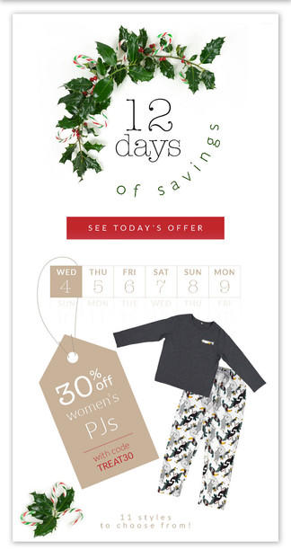 Email Campagn Holiday Sale