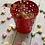 Thumbnail:  Bucket of Petite Cookies