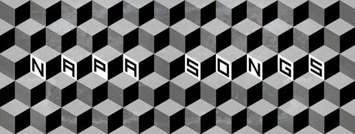 NAPA banner