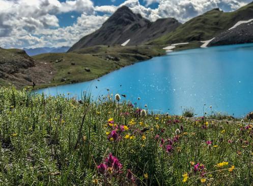 Top 5 Hikes | Durango, Colorado Area