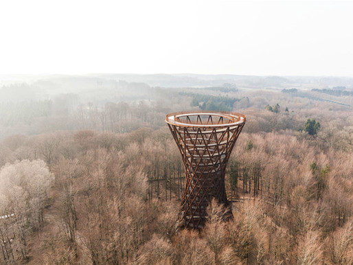 This Forest Spiral Path Lets You Walk Among Treetops in Denmark