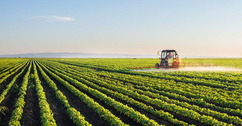 Agricultura.jpeg