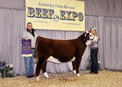 Lulu+Kentucky+Beef+Expo+backdrop