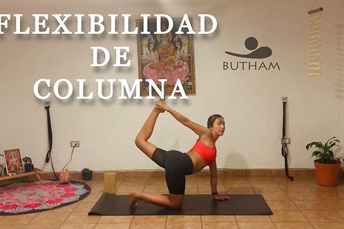 Clase de Flexibilidad de columna