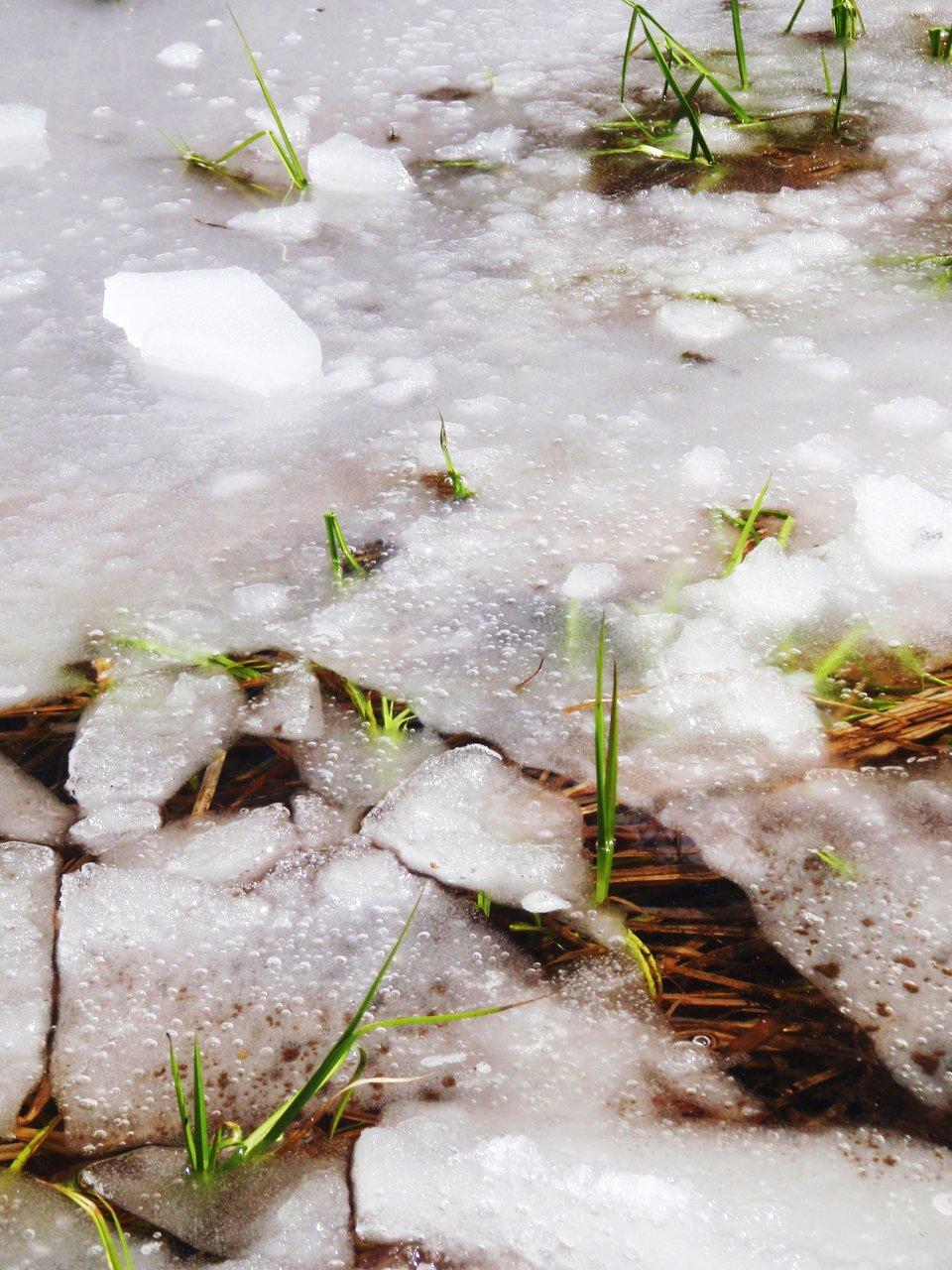 Cracks of Ice