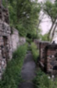 peaceful pathway, cobblestones, meditation spot, forest, beauty, stillness