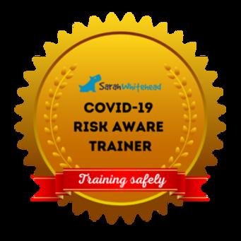 Covid+Risk+Aware.png