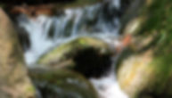 8868 web photo 1920_1200pix rt_edited.jp