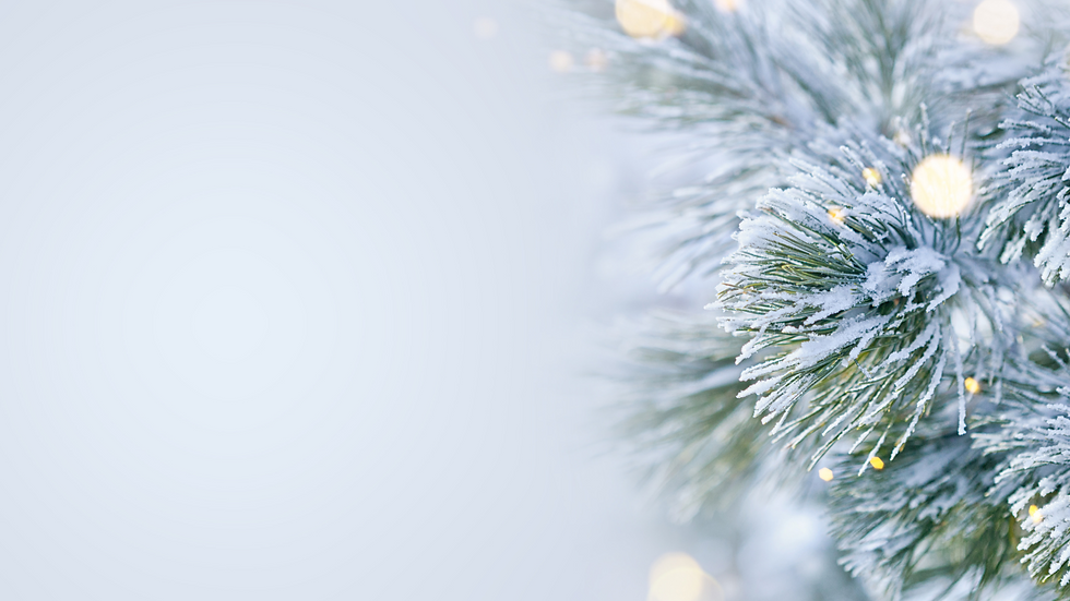 Copy of Copy of CHRISTMAS ON ASPEN POSTS