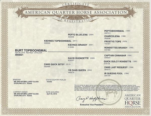 Burt Topboonsmal Registration