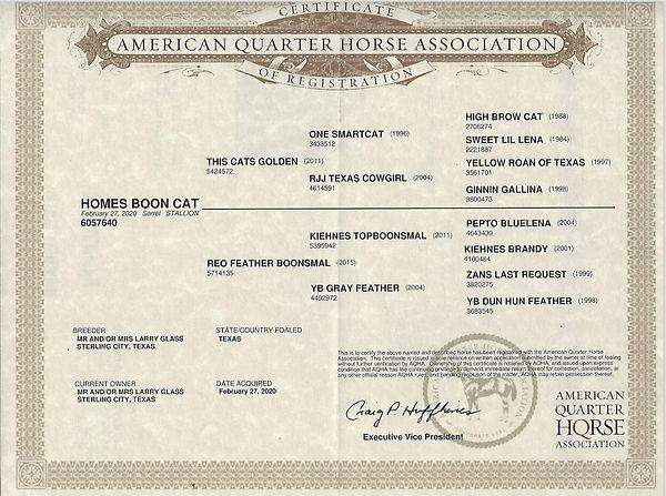 Homes papers.JPG