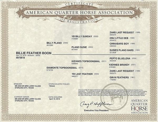 Billie Feather Boon Registration