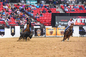 Corral Pannels on Quicksilver Roping Arena