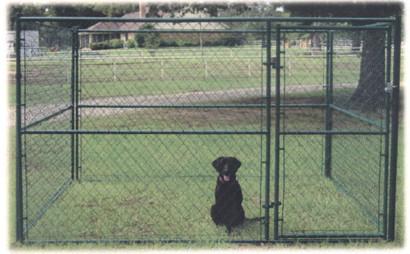 Powder Coated Black Dog Kennel
