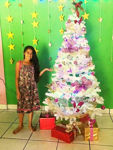 christmas hogar.jpg