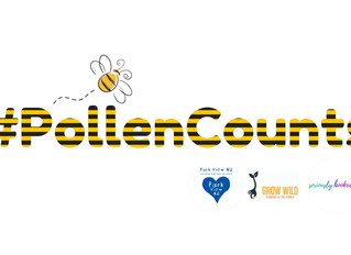 The story of #pollencounts