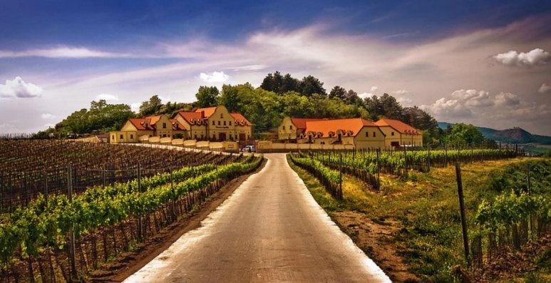 Vinařství u Kapličky - Zaječí (CZ)