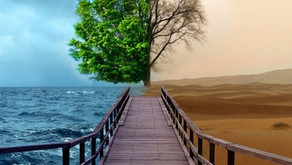 Doença Bipolar – Desmistificando certos mitos