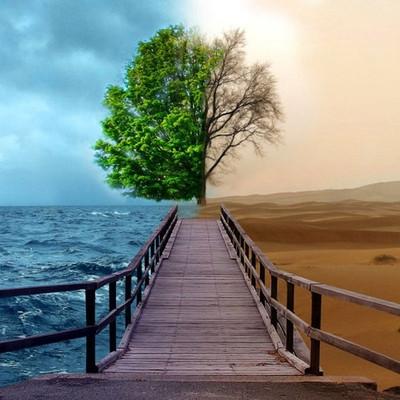 doença_bipolar_em_que_consiste_e_seus_sintomas.jpg