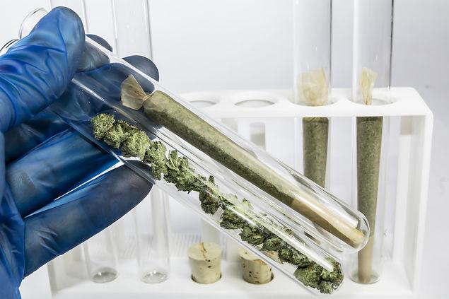 Medical Marijuana Can Help Anxiety