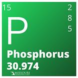 Phosphorus.png