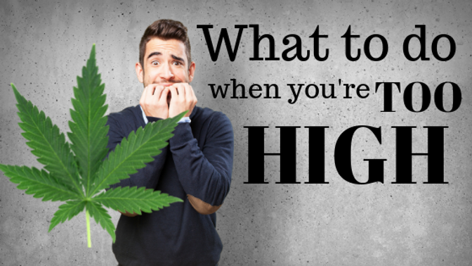 What To Do If I Get Too High From Medical Marijuana