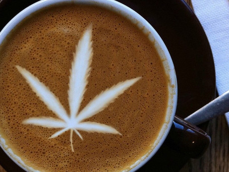 Cannabis and Caffeine; What's the Beef with the Beans?