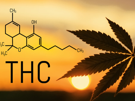 We're Better Together; CBD and THC Team Up
