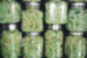 beautiful cannabis buds in jars