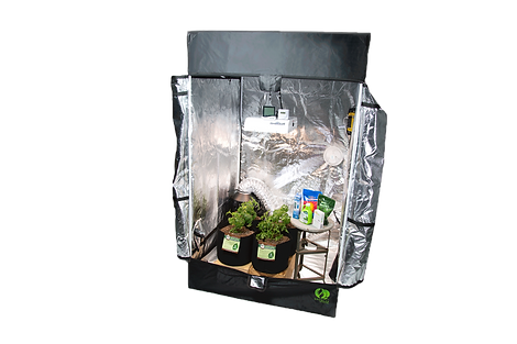 marijuana grow tent