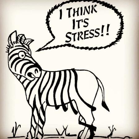 המערכת העצבית שלנו בהשפעת הקורונה
